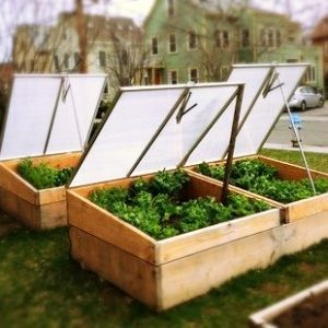 Season extending cold frames
