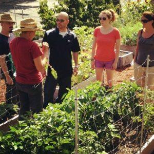 Urban farming course