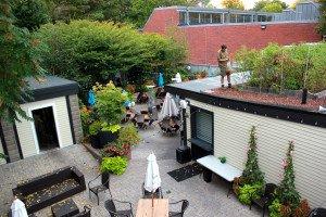 ester-rooftop