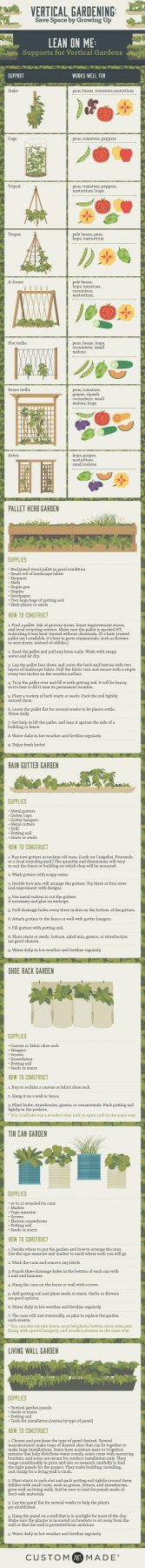 vertical-gardening-options