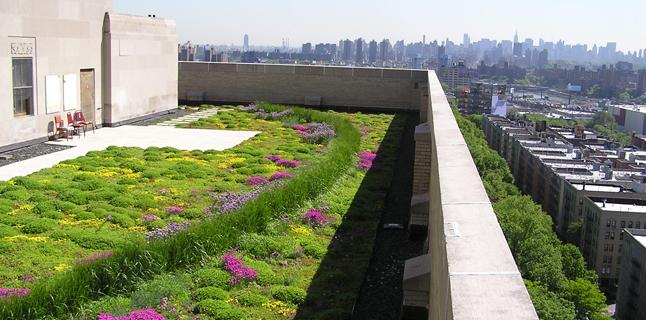Green roofs on every building for Sezione tetto giardino