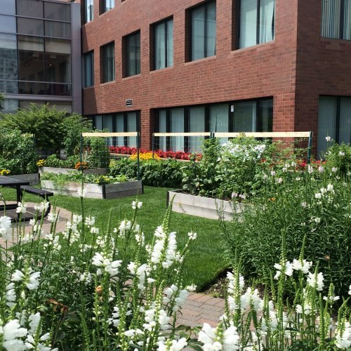Onsite Gardens LEED the Green-Building Industry