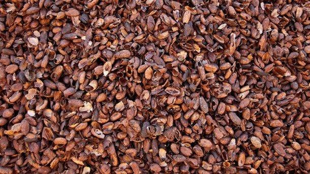 cocoa-hull